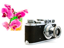 Old photocamera and pink orchid Stock Image