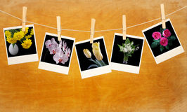 Old photos with flowers hang on clothespin on wood Stock Photo