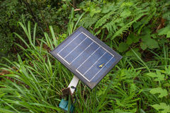 Old photovoltaic using renewable solar energy in forest.  Stock Photography