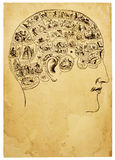 Old Phrenology Illustration Stock Image