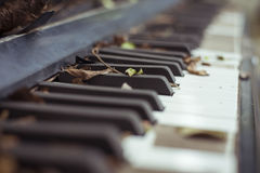 Free Old Piano Stock Images - 61674354
