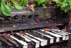Old piano left to become overgrown with plants and vegetation Stock Photos