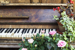 Old piano with roses and flower pot Stock Image