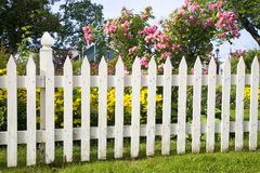Old Picket Fence. Rustic white picket fence with roses and other flowers in the background Royalty Free Stock Photos