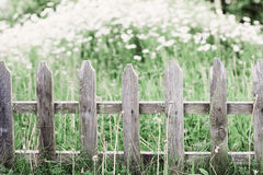 Old  picket fence Royalty Free Stock Photo