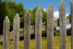 Old picket fence with moss Royalty Free Stock Photography