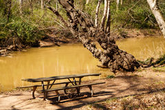 Old Picnic Table by Muddy River Stock Images