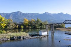 Old pier in the backwaters of the Columbia River with yellowed a. Autumn landscape with an old abandoned rotten wooden pier in the bay of the Columbia River with stock photos
