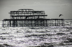 The old pier in Brighton, England. Stock Photo