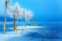 Old pier construction and beautiful frozen trees. Old pier construction and beautiful frozen trees stock images