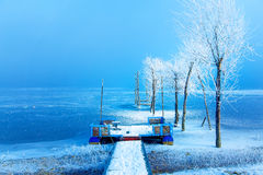 Old pier construction and beautiful frozen trees. Old pier construction and beautiful frozen trees stock photography