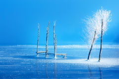 Old pier construction and beautiful frozen trees. Old pier construction and beautiful frozen trees royalty free stock photo