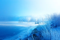 Old pier construction and beautiful frozen trees. Old pier construction and beautiful frozen trees stock image