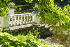 Old pier and pond through greenery Stock Photos