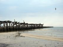 Old pier remains in Baltic sea, Lithuania royalty free stock images