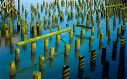 Old Pier Remains. Remains of old piers in the Columbia River in Astoria, Oregon Stock Photo