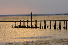 Old pier on the shore of the Gulf of Mexico Royalty Free Stock Images