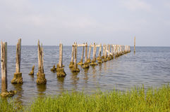 Old pier on the shore of the Gulf of Mexico Stock Images