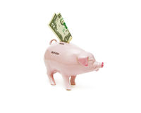 Old piggy bank and $ 2 banknotes. Old piggy bank and $ 2 banknotes on a white background Royalty Free Stock Image