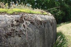 Old pillbox bunker Stock Image