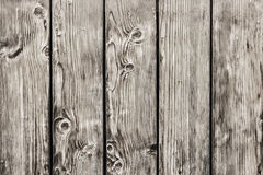Old Pine Wood Planks Fence With Knots - Detail. Photograph of antique rustic Pine wood fence - detail Stock Images