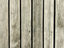 old pine wood texture background Royalty Free Stock Image