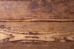 Pine wood texture. Royalty Free Stock Image