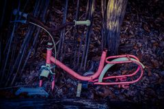 Old pink bicycle royalty free stock photos