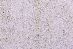 Free Old Pink Whitewashed Wall Texture Stock Photography - 94579762