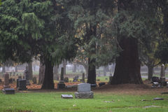 Old Pioneer Cemetery in fog Stock Photography
