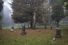 Old Pioneer Cemetery in fog Stock Images