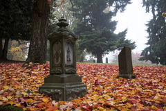 Old Pioneer Cemetery in fog Royalty Free Stock Photography