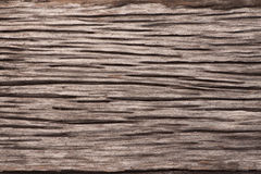 Old plank rough. Light brown Royalty Free Stock Photo