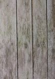 Old planks. Structure of old wooden planks Stock Photos