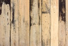 Old planks background Royalty Free Stock Image