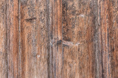 Old planks with a distinct wood structure Stock Images