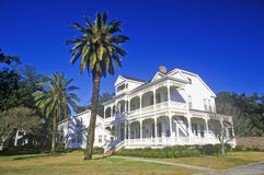 Old Plantation in Biloxi, MS with palm trees Royalty Free Stock Photos