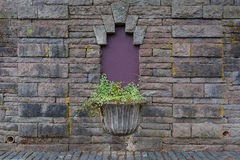 Old Planter on Stone Wall Stock Photography