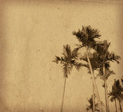 Old plants paper textures Royalty Free Stock Photos