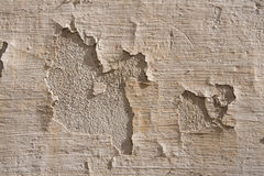 The old plaster. Royalty Free Stock Photos