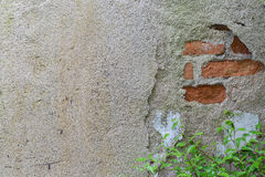 Old plaster walls background Stock Photo