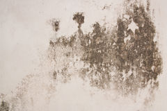 Old plaster walls Stock Photos