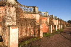 The old plastered wall with autumn ivy. Palace open greenhouse, Peterhof, Russia Royalty Free Stock Photography