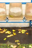 Old plastic seats on outdoor stadium players bench, chairs with worn paint below yellow roof.  End of football seasson. Stock Image