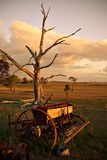 Old plough on farm at sunset Stock Photos