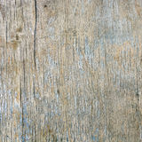Old plywood. The square background of the old plywood wall Stock Image