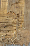 Old plywood. The old destroyed multilayered split plywood Royalty Free Stock Photos