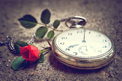 Old pocket watch and a rose Stock Image