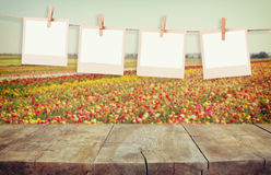 Old polaroid photo frames hanging on a rope with vintage wooden board table in front of summer flowers field bloom landscape Stock Images