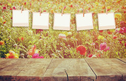 Old polaroid photo frames hanging on a rope with vintage wooden board table in front of summer flowers field bloom landscape Stock Photography